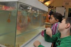 Centrum voor Natuur en Milieu Educatie De Zwanebloem  Begeleider natuur en milieu lessen