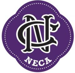 Korfbalvereniging NeCa Trainer/coach van een jeugdteam KV NeCa